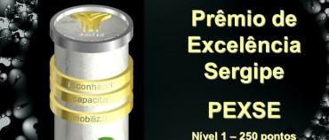 A Wellcon Treinamento & Consultoria foi reconhecida com o Prêmio de Excelência Sergipe – PEXSE